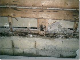 同じく腐食した土台。浴室まわりの木部は、かなりの傷み